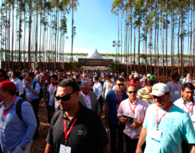 Expoforest 2014: Público Qualificado e Bons Negócios