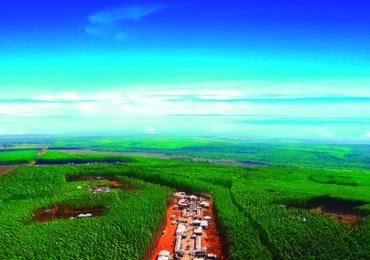 (Português do Brasil) Expoforest 2018 é apresentada ao mercado florestal