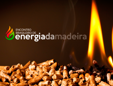 Encontro <br>Brasileiro de Energia<br>da Madeira