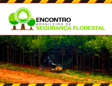 Brazilian Forest Safety Meeting