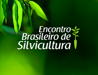 Brazilian Silviculture Meeting
