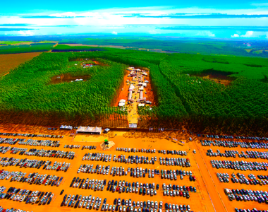 Expoforest 2018