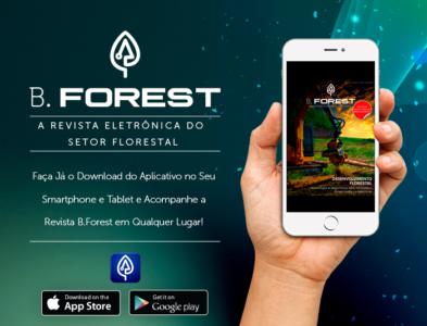 Revista B.Forest