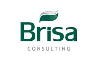 Brisa Consulting