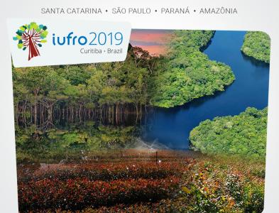 Participe das Viagens Técnicas da IUFRO 2019