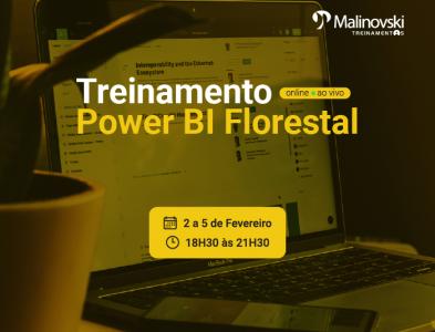 Treinamento de Power BI Florestal