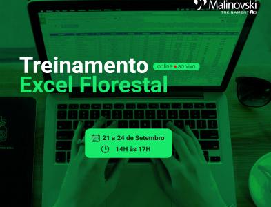 Treinamento de Excel Florestal